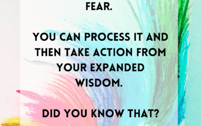 Fear. Process it. Then take action from your wisdom.